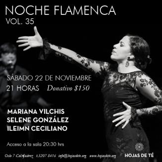 Noche Flamenca vol 35