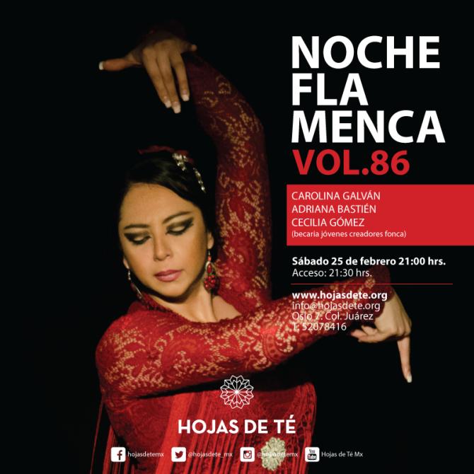 12noche_flamenca-vol-86