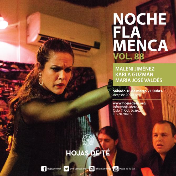 14noche-flamenca-vol-88_feb