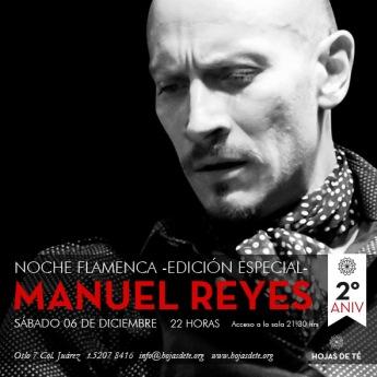Noche Flamenca Manuel Reyes