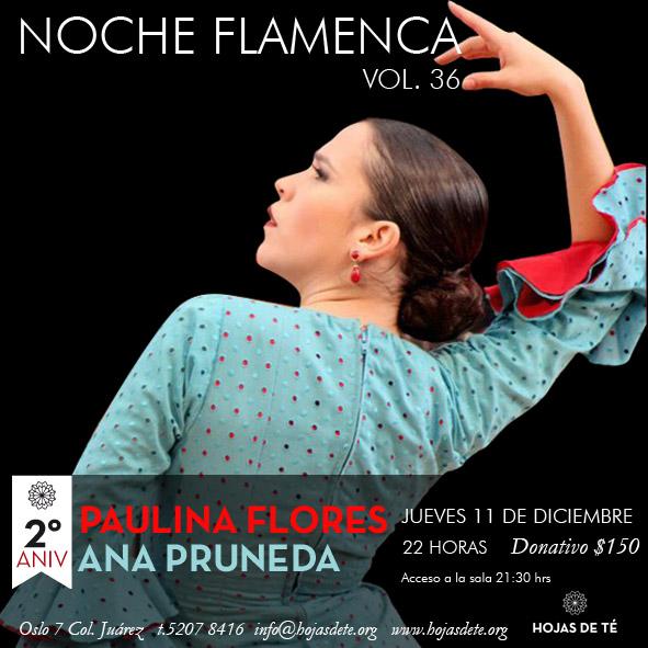 Noche Flamenca vol 36