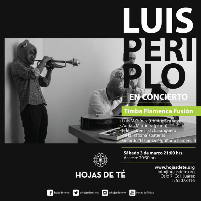 9)-Luis-Periplo-en-concierto