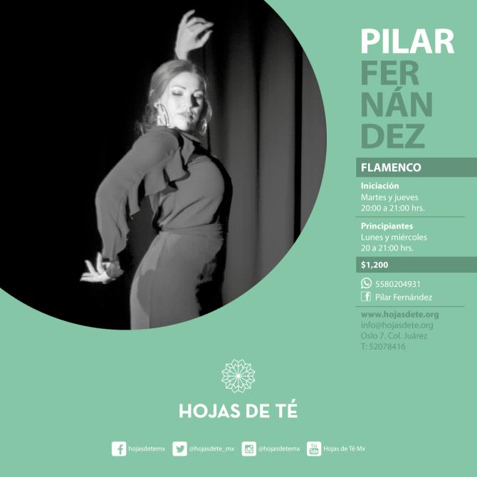44)-Clases_Pilar-Fernández