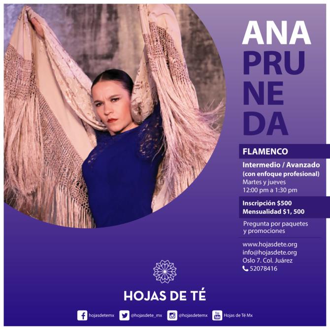 5)clases_ana-pruneda