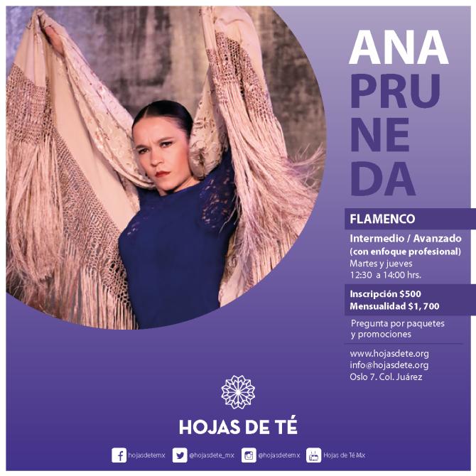 5)Clases_-Ana-Pruneda