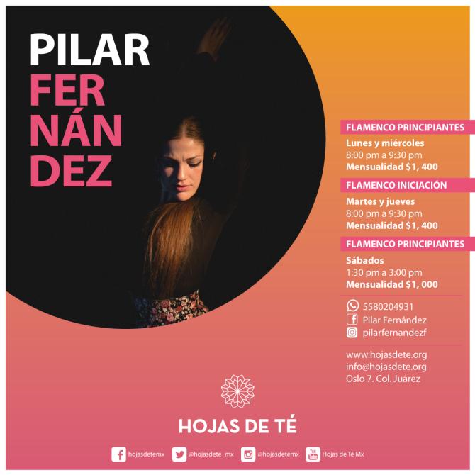 19)Clases_-Pilar-Fernandez